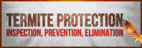 RESIZED-BUTTON-–-Termite-Protection