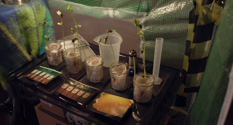 Kira O'Reilly's Garden Shed Lab at Laboratory Life, 2011