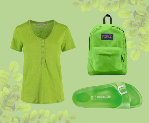201216-consumo-greenery-8