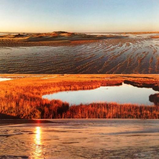 """Vem ver mais do trabalho de Angella Conte, em cartaz na expô """"Terra Nua"""". Aqui a colagem fotográfica """"Delicadeza dos dias"""""""