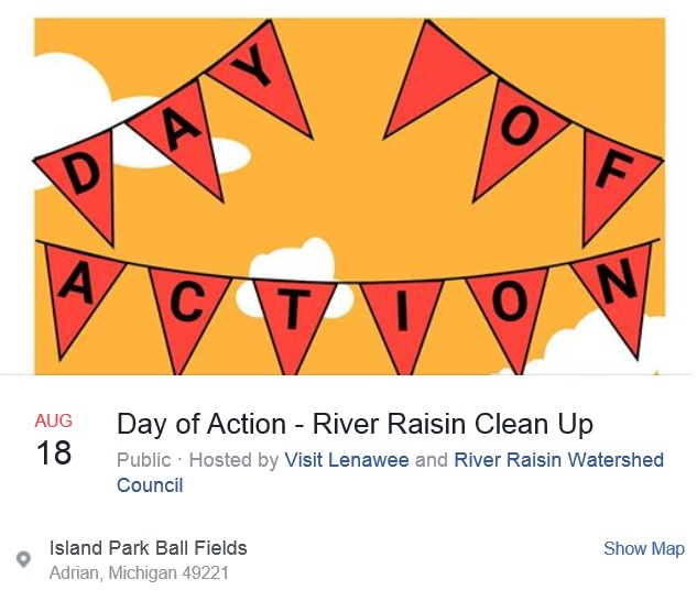 Day of Action, August 18, 2017, Raisin River Cleanup