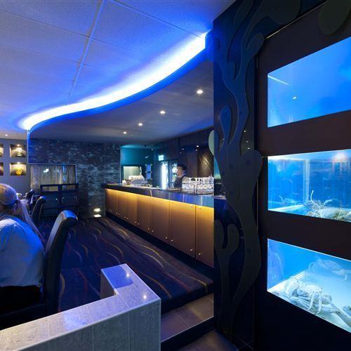 Inside fish tank