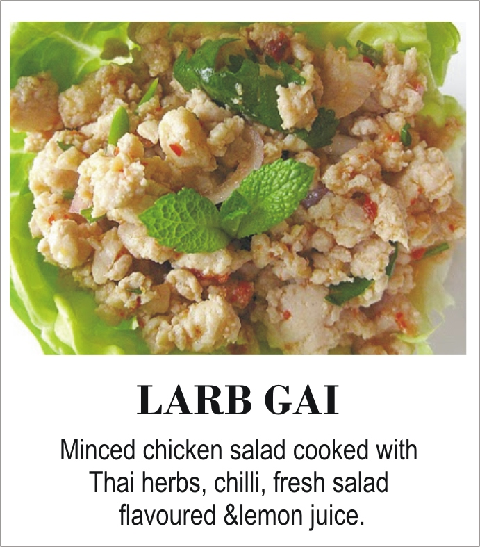 Thai%20thani%20larb%20gai