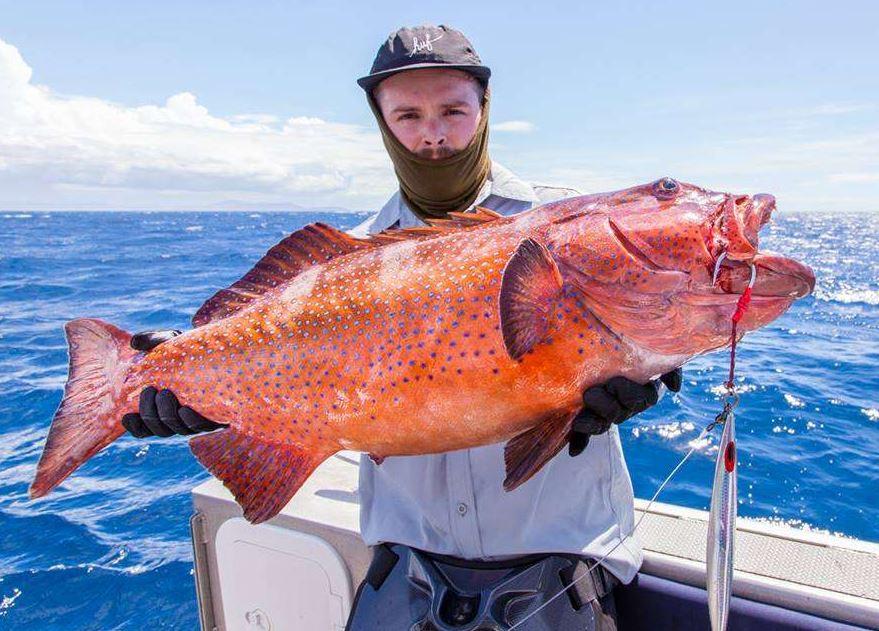 Big game fishing in Fiji