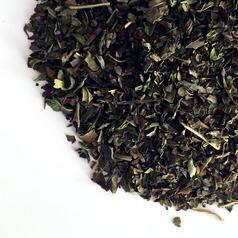 Spearmint leaf cs org