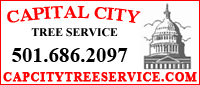 Capital City Tree Service