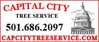 Capital City Tree Service
