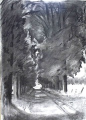 charcoal of avenue by Susanna Lyell medium