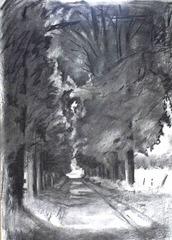 charcoal of avenue by Susanna Lyell medium