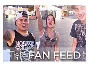 Fan Feed