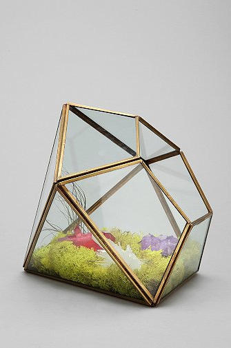 "Prismatic geo terrarium: The perfect home for Prism seed paper. Your KatyCat can ""plant the PRISM and spread the light!"""