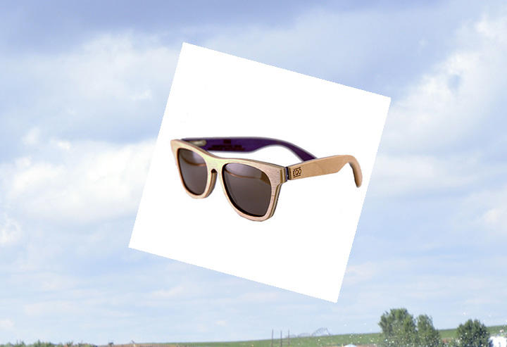 Salix sunglasses by EQO Optics