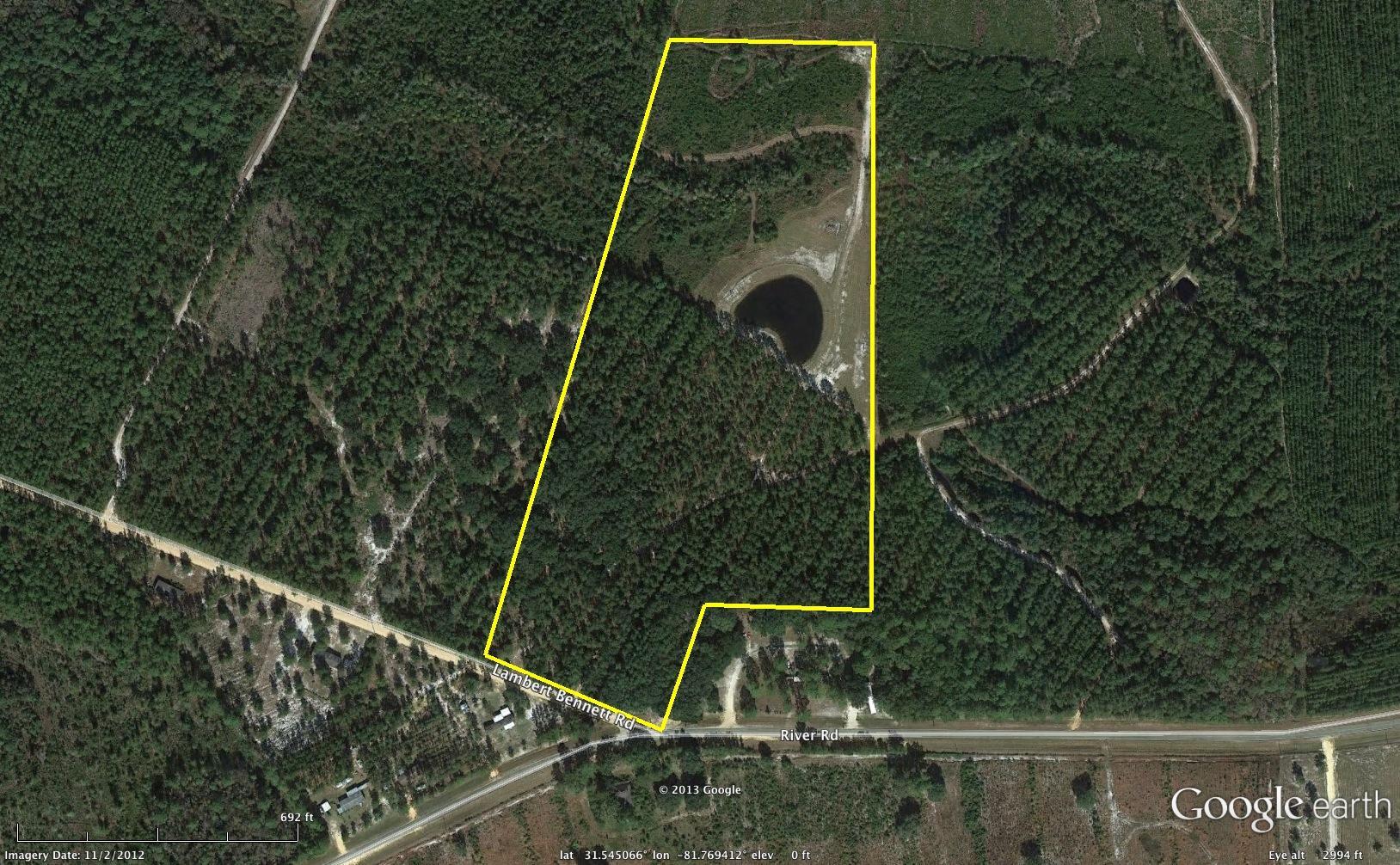 25 acres of Recreational Land / Undeveloped Land for sale. Lambert Bennett Rd, Jesup, GA