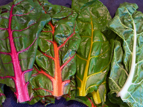 chard2-small.jpg - medium