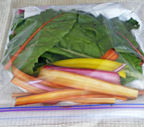 chard-in-bag-small.jpg - medium
