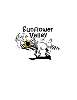 sunflower-valley.jpg - original