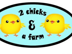 2 chicks and a farm