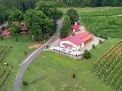 Overmountain Vineyards & Winery