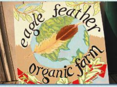 Eagle Feather Organic Farm
