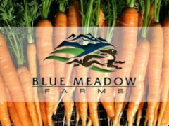 Blue Meadow Farms