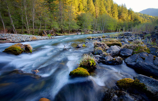 Is Your Office Productivity Flowing Like A River 187 Logware