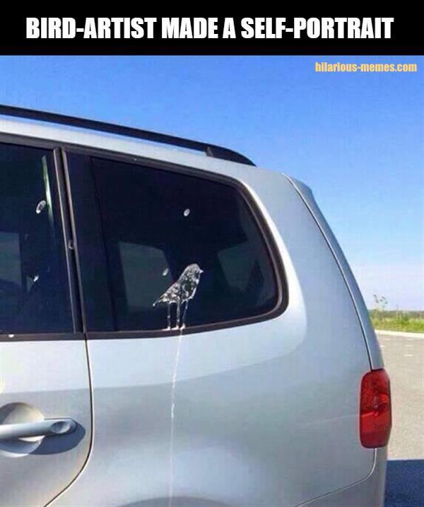 Bird-artist made a self-portrait