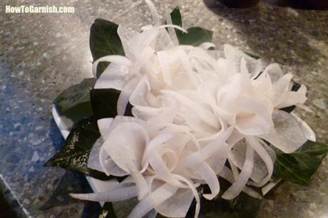 Rettich bloem