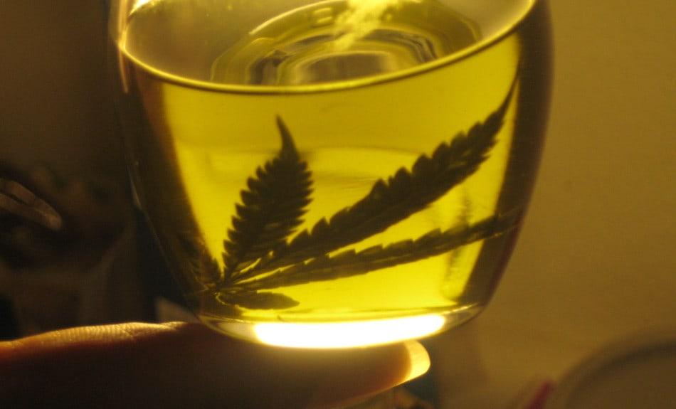 aceite de cáñamo, cannabis oil, aceite de marihuana, marihuana, THC, hemp oil