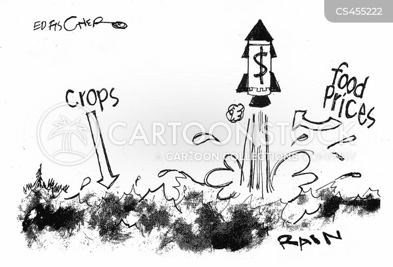 inflation on prices of farm food products Inflation is defined as a rise in the general price level in other words, prices of many goods and services such as housing, apparel, food, transportation, and fuel must be increasing in.