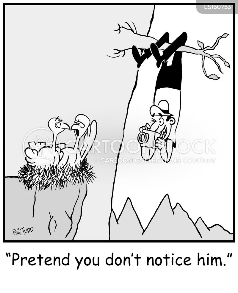 birdwatcher cartoons and comics   funny pictures from