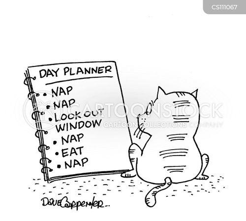 cartoon nap