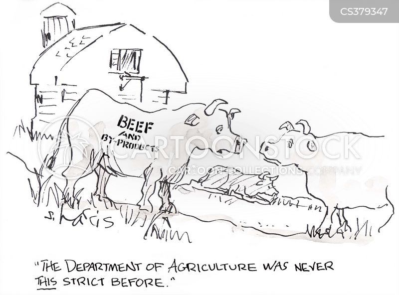 Beef Cattle Cartoon on indian wiring diagram