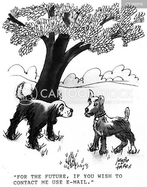 Dog Peeing Cartoons and Comics