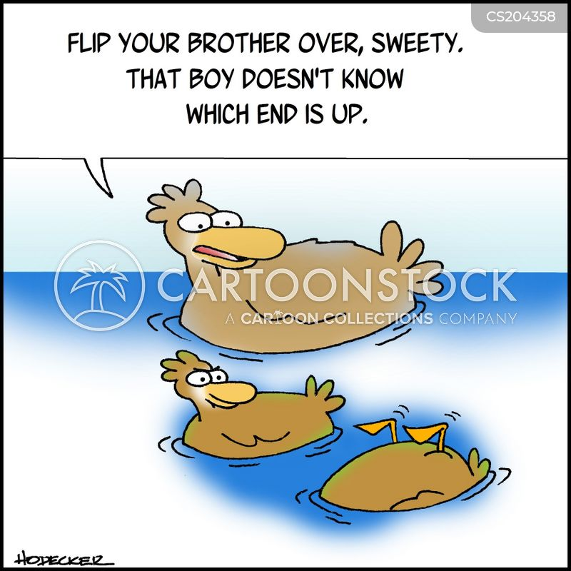 Swimming Lessons Cartoons And Comics Funny Pictures From