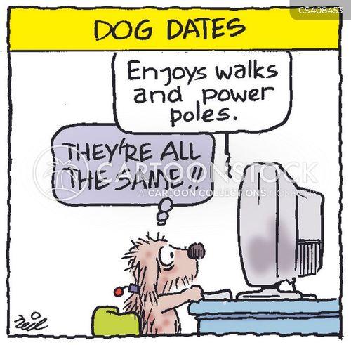 Dating profile dog baiting