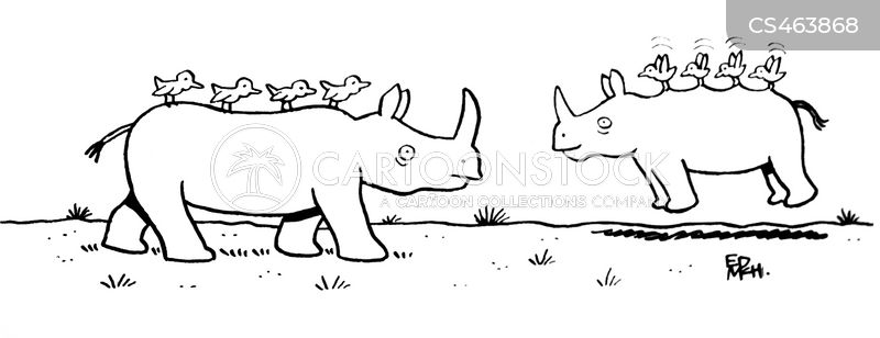 oxpeckers and rhinoceroses relationship quiz
