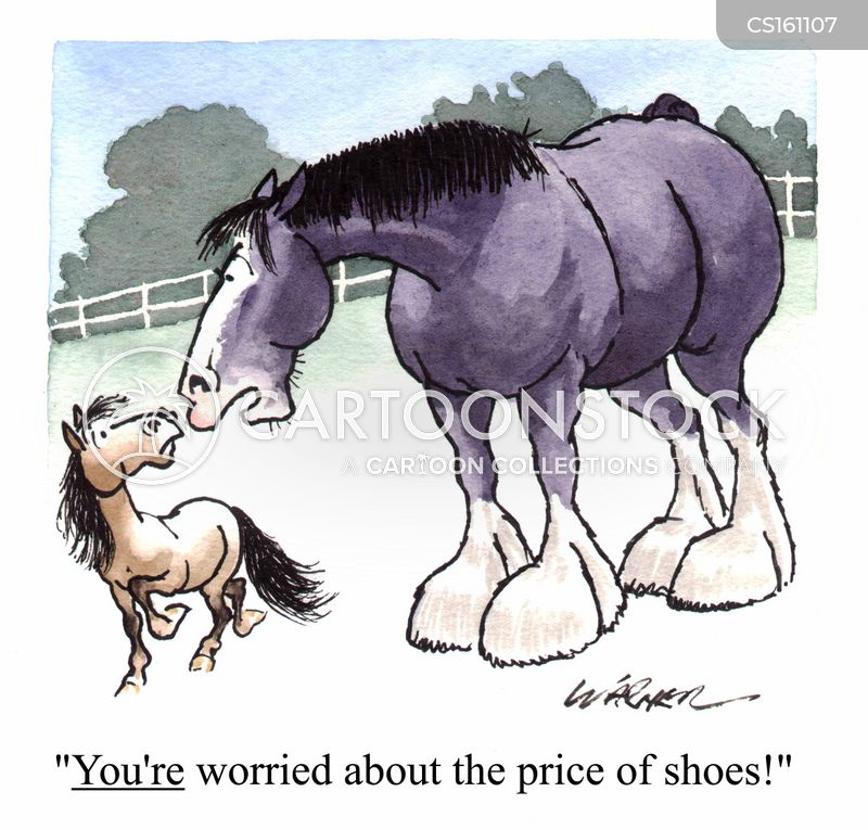 Shetland Ponies Cartoons and Comics - funny pictures from ...