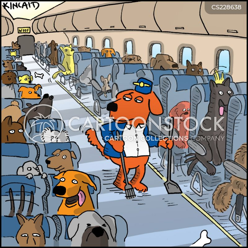 classic-2 United Airlines Dog