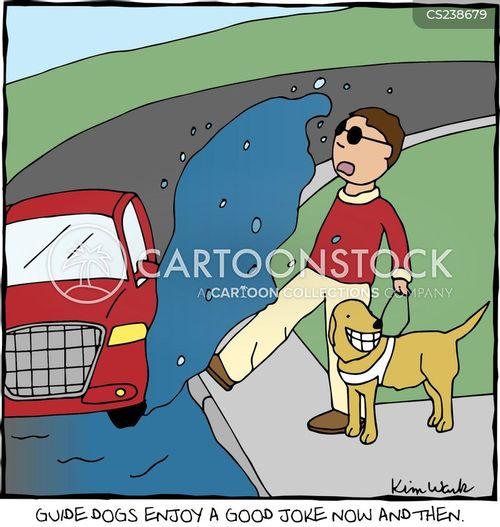 Blind Dog And Seeing Eye Dog
