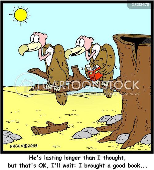 buzzard cartoons and comics   funny pictures from cartoonstock