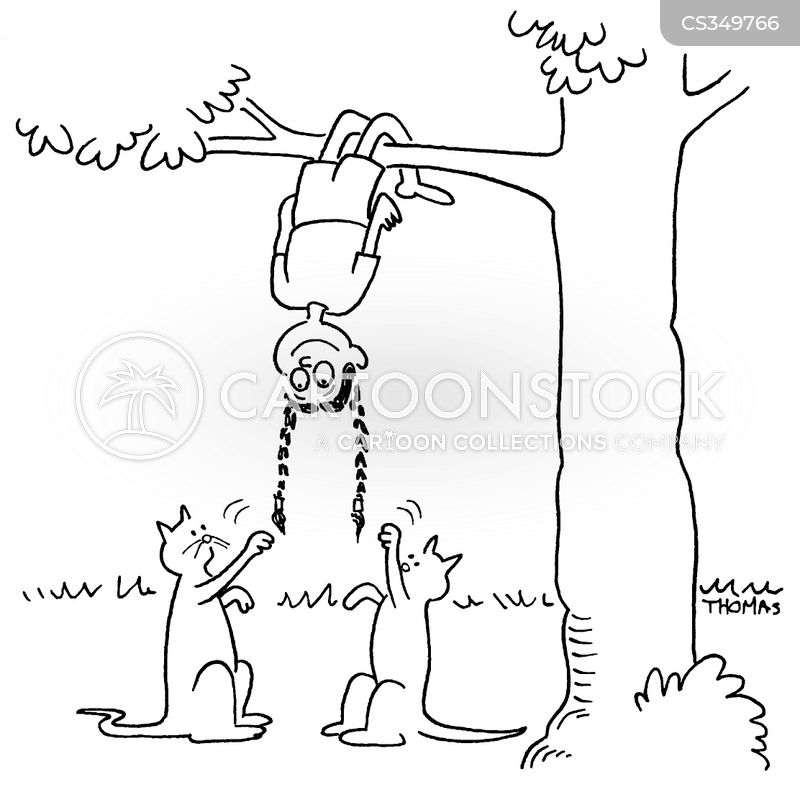Braid Cartoons And Comics Funny Pictures From Cartoonstock