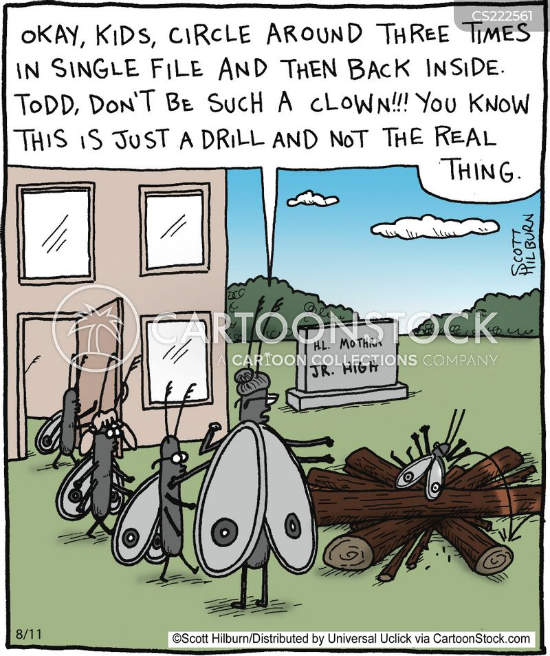 practise drill cartoons and comics funny pictures from