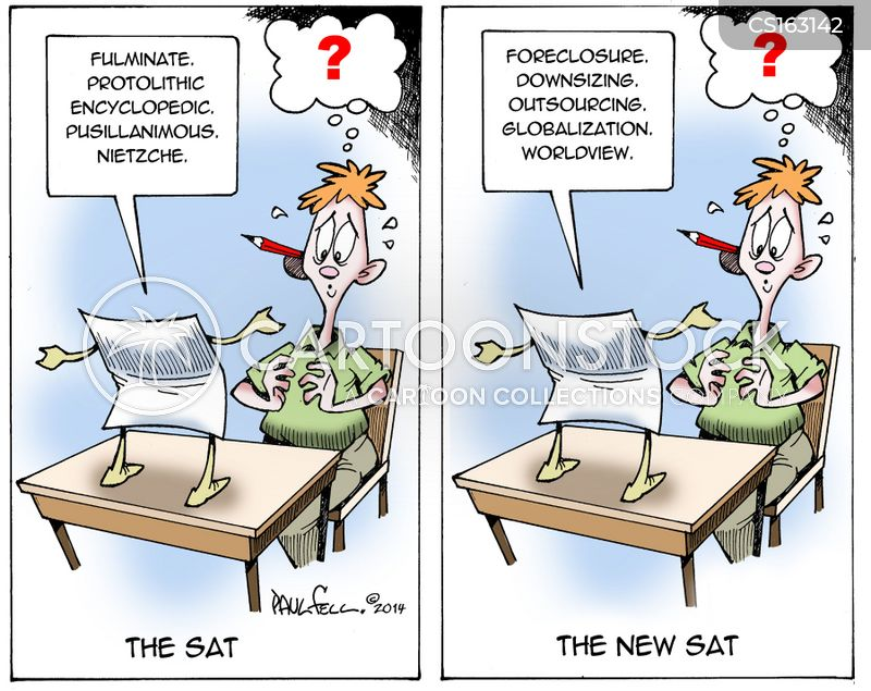 the importance of sat test to the educational system Defined by a test score: america's troubling education system  the sat is  one of the most important tests that most americans take in their.