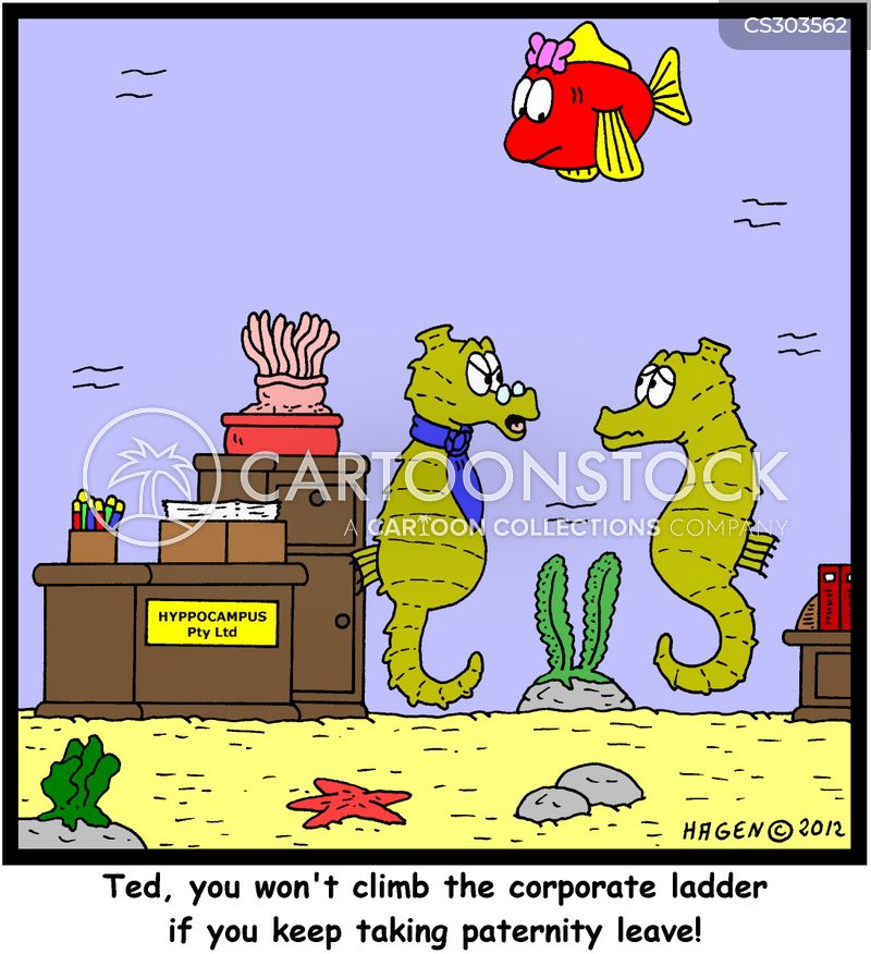 Seahorse Cartoons and Comics - funny pictures from ... Pictures Of Baby Horses