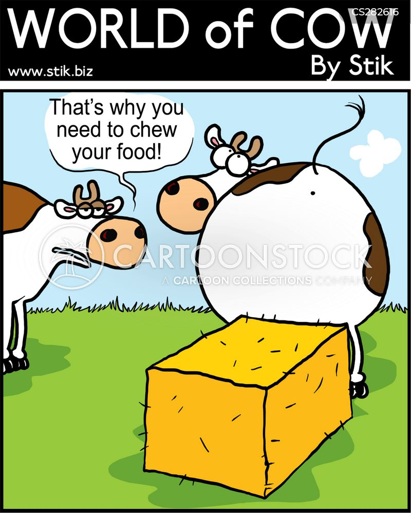 Hay Cartoons And Comics Funny Pictures From Cartoonstock