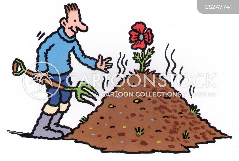 Flower Bed Cartoons And Comics Funny Pictures From