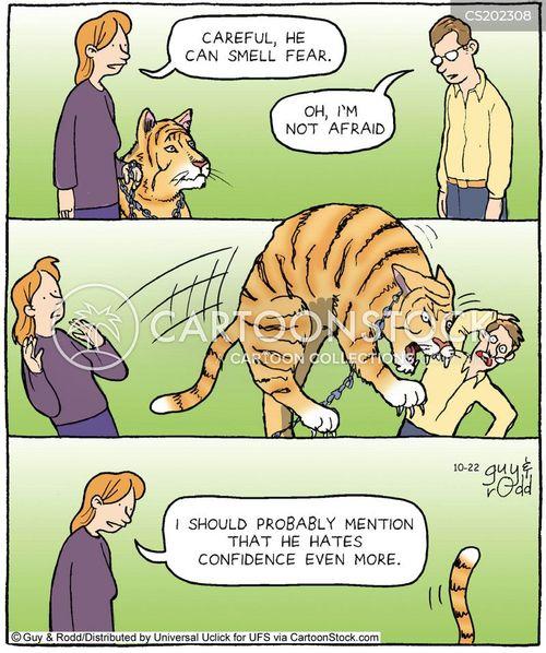 Cat Vs Dog Sense Of Smell