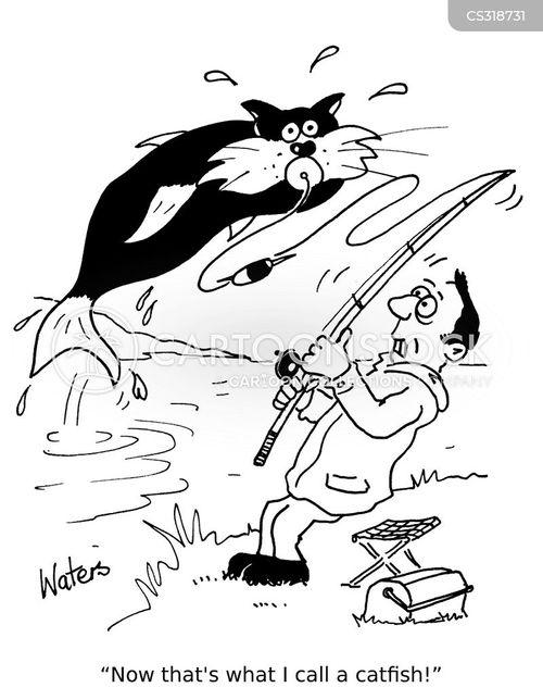 Funny catfish cartoon