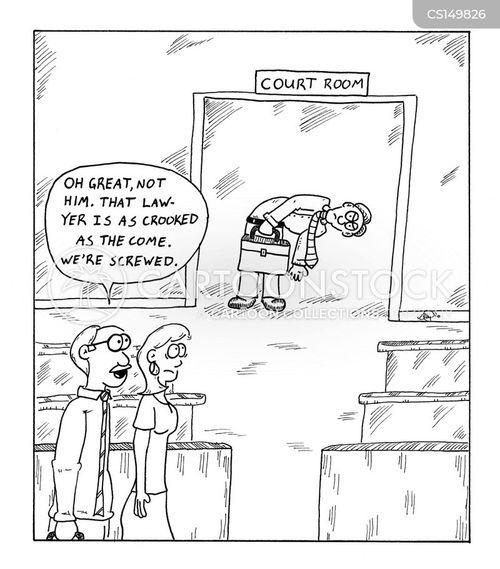 public lawyer