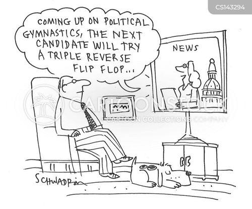 flip-flops cartoons and comics